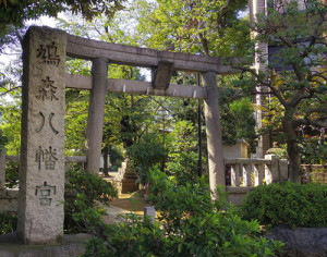 hatonomorihatiman02