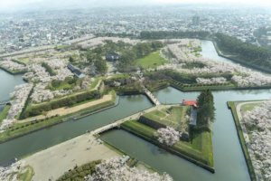 桜の季節18